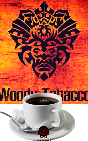 https://d-hydra.com/wp-content/uploads/2019/09/voodu-logo-1.png