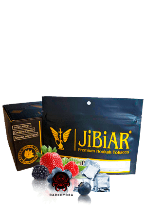 https://d-hydra.com/wp-content/uploads/2019/10/jibiar-logo-1.png