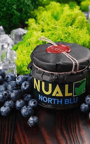 https://d-hydra.com/wp-content/uploads/2020/05/nual-logo-1.png