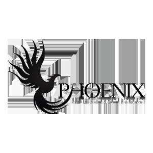 Кокосовый уголь Phoenix (Феникс)