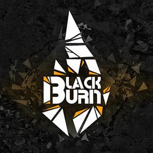 Табак Black Burn (Блэк Бёрн)